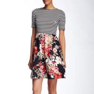 Eliza J Striped Bodice Fit & Flare Dress
